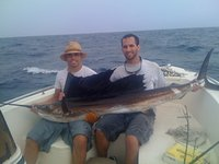 Anna Maria Islander: Sailfish  tops fisher's birthday