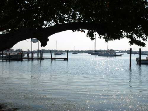 Anna Maria Islander: Harbor plan anchored for review