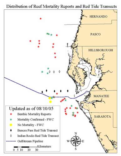red tide dead zone