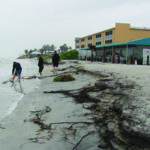 TS Debby drenches Island; threatens sea turtles