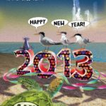 New year terns 2013