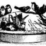 Public invited to crow supper