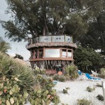 Magistrate orders fine or compliance for tree house owners