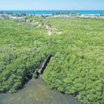 Grassy Point Preserve's path to bayfront opens April 19