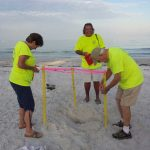 1st of 2017 Anna Maria Island sea turtle nests spotted, staked