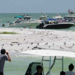 Passage Key attracts boaters, nudists, refuge violators