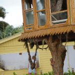 Treehouse facing demolition, appeal to high court readied