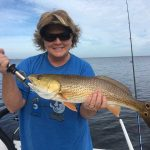 Fall fishing pattern starts up, seasonal species arrive