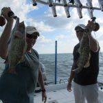 Fast-action species keep island anglers busy