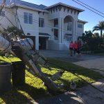 Trucker takes down 4 power poles in Anna Maria