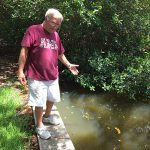 Spring Lake may be polluted, but source is unknown