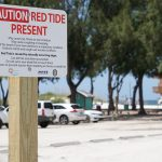 Reports of red tide effects vary at beaches, warnings posted