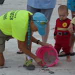 Flotillas of sea turtles hatch, nest excavations bring rewards