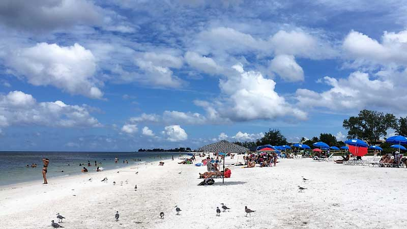 3 Labor Day At Manatee Public Beach 4000 Ave Holmes Anna Maria Island Chamber Of Commerce Vice President Cathy Pizzo