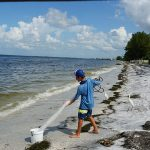 Anna Maria teams on red tide cleanup with county, Cortez fishers