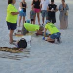 Turtle watch documents loggerhead nesting cycle on AMI