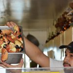 Optimism runs high — in spite of red tide — for stone crab harvest