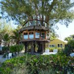 Treehouse owners file new case in federal court