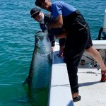 Springtime fishing is as good as it gets for island anglers