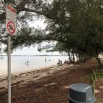 No-swim advisory returns to south side of causeway beach