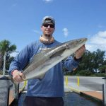 Catch-and-release snook fishing heats up under mangroves