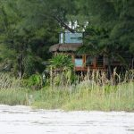 City seeks dismissal, sanctions in owner-filed treehouse case
