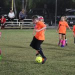 Champs crowned in youth soccer, adults midway in season