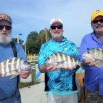 Sheepshead push is on, numbers increase in February