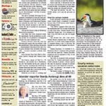 The Islander Newspaper E-Edition: Wednesday, July. 29, 2020
