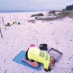 Turtle watchers dig deep for final nests