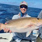 Migratory fish — macks, jacks, kings — invade nearshore water